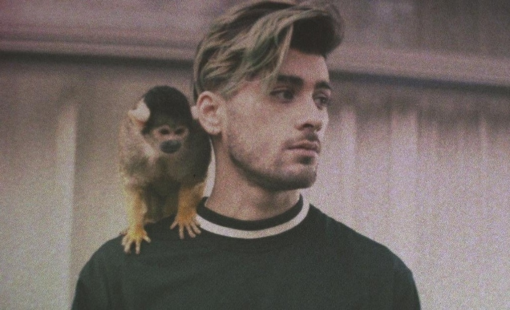ZAYN estrena el video de 'Still Got Time'